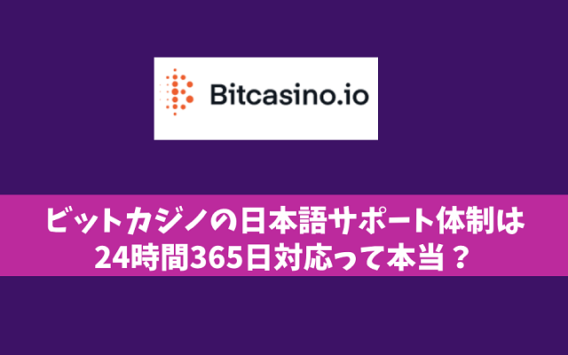 ビットカジノの日本語サポート体制は24時間365日対応って本当?