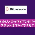 ビットカジノでハワイアンドリームのスロットはプレイできる?
